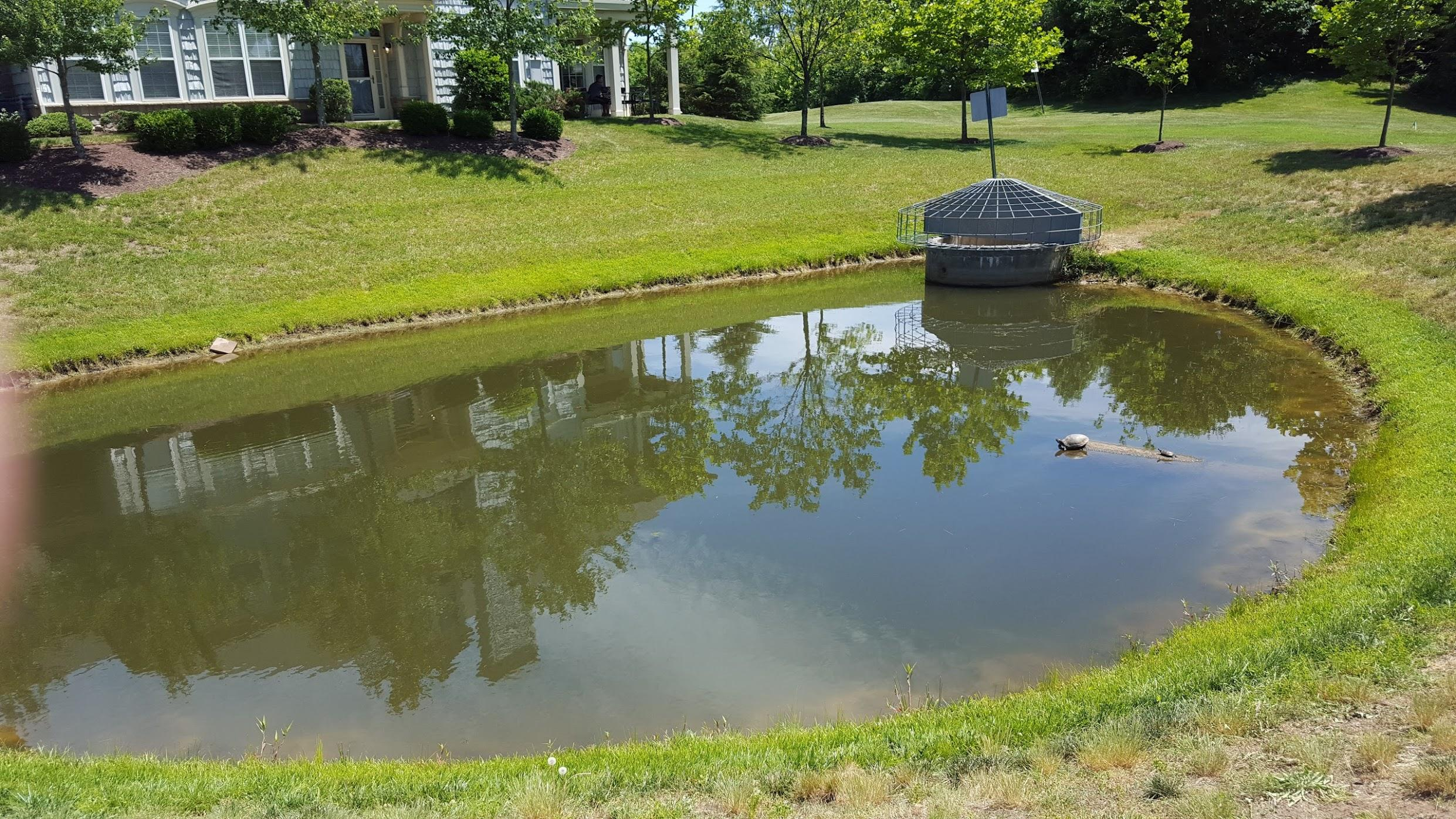 Virginia waters wetlands stormwater pond management for Pond service